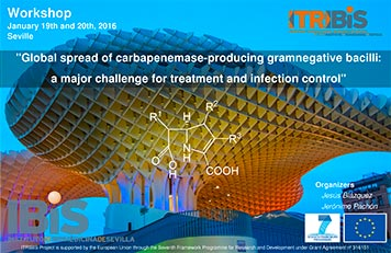 Workshop on Global spread of carbapenemase-producing Gramnegative Bacilli: a major challenge for treatment and infection control
